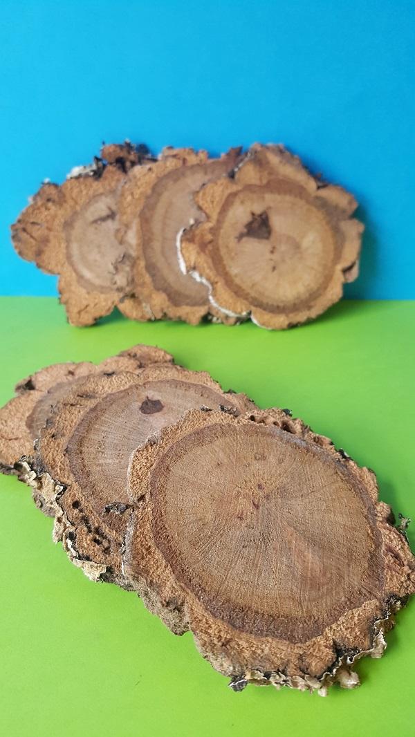 Cork Branch Slices