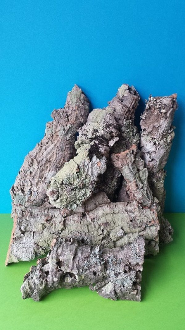 Loose Cork Bark decoration vivarium terrarium rodent reptile turtle buy online uk