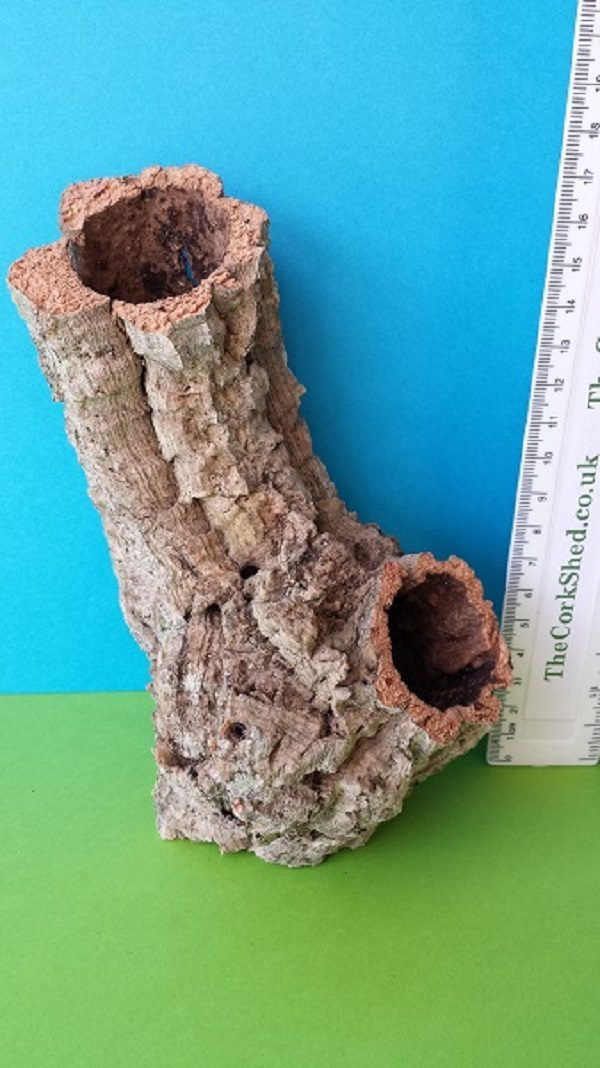W5T1 Cork tube vivarium decoration